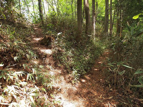 大岳山直登コース(左)と大岳神社経由コース(右)の分岐地点