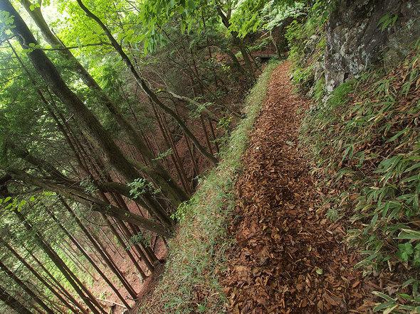 大岳山荘から馬頭刈尾根に向かう絶壁通路
