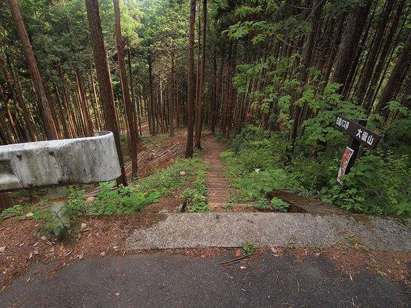 白倉バス停付近、一度林道を横切る