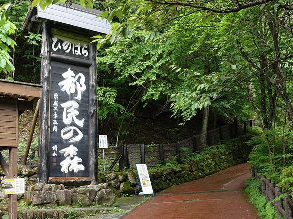 ひのはら都民の森入口(駐車場前)