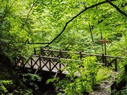 三頭沢の橋