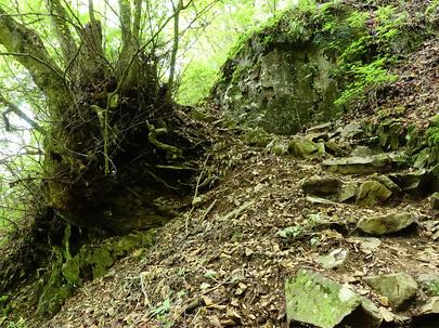石山の路の山道