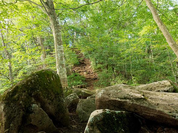岩が多い石山の路