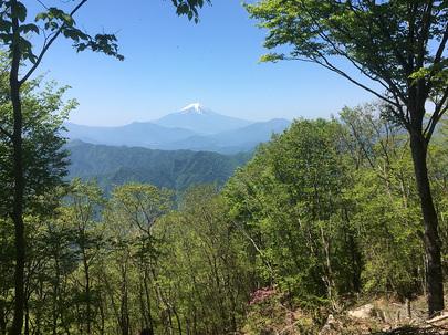笹尾根のベンチから望む富士山