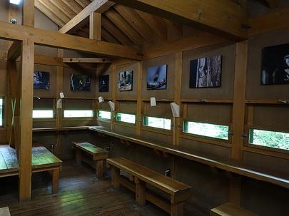 野鳥観察小屋の室内