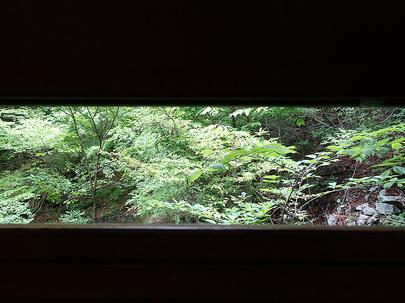 野鳥観察小屋の小窓から鳥を観察!