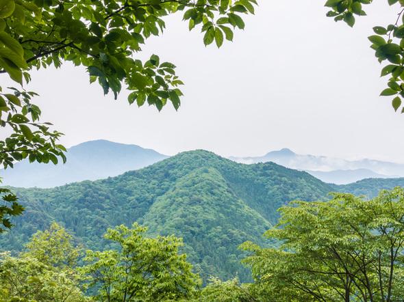 三頭山「探鳥の路」中間地点の展望台からの眺望