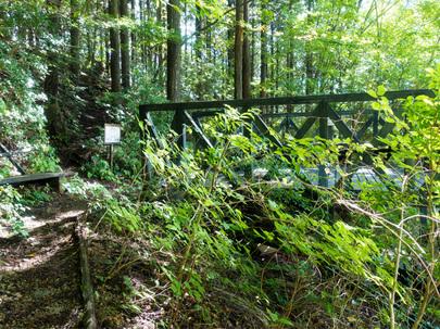 三頭山「探鳥の路」と「回廊の路」合流地点の展望台