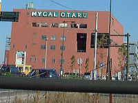 マイカル小樽