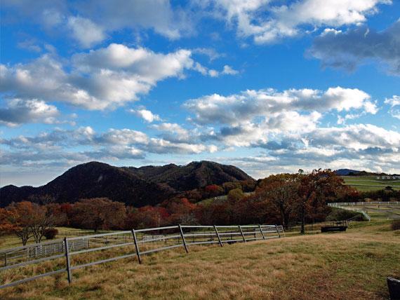 紅葉する霧降高原の山々