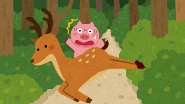 目の前に大きな鹿が横切ったイメージ
