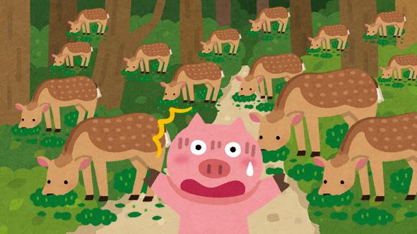 鹿の大群に遭遇したイメージ