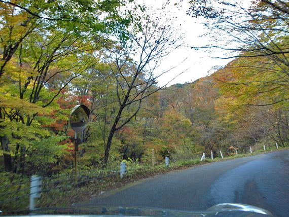 紅葉の美しい県道245号線