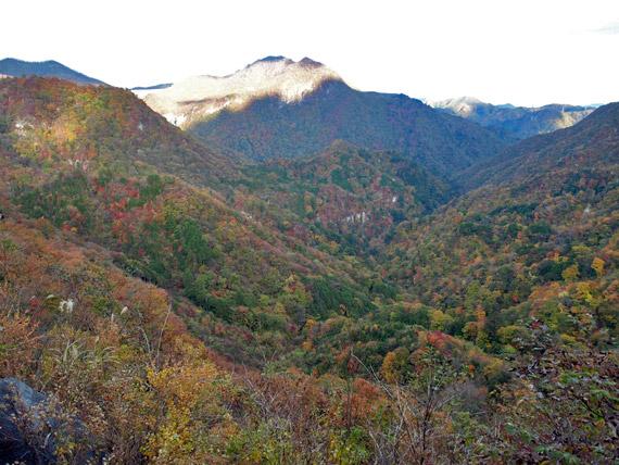 県道245号線からの紅葉風景