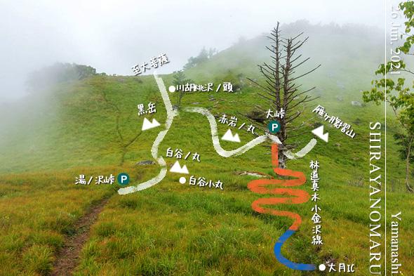霧が立ち込める夏の白谷ノ丸