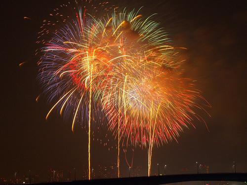 2013年 東京湾大華火祭 写真8