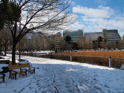 雪で歩きづらい不忍池の歩道