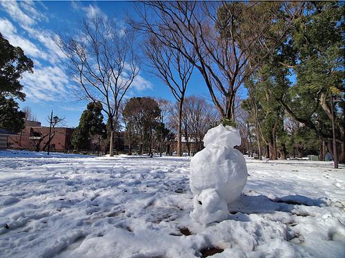 上野公園と雪だるま