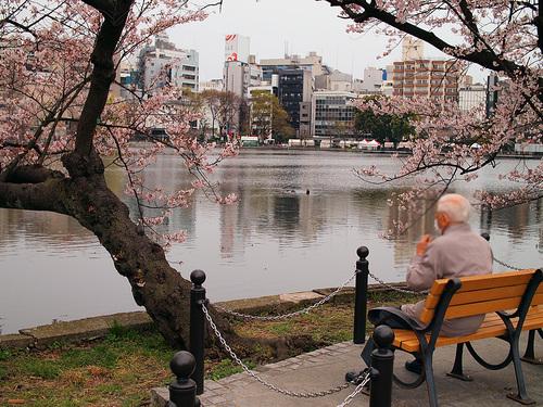 2016年4月2日の上野公園8