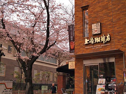 2016年4月2日の上野公園13