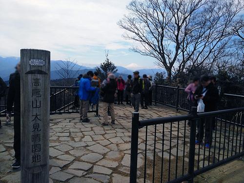 木下沢梅林・高尾山周遊11