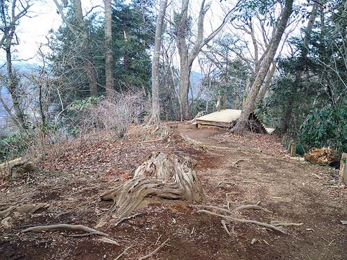 木下沢梅林・高尾山周遊12