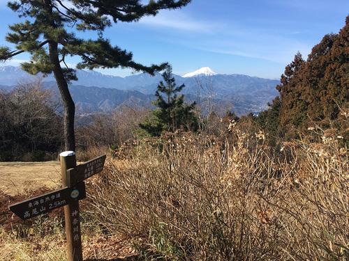 城山から富士山の眺望