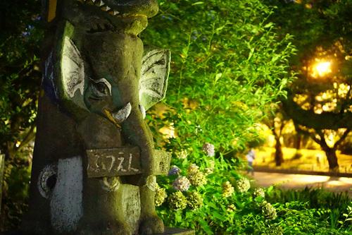 2018年7月1日夜の上野公園2