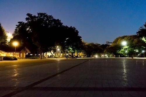 2018年7月1日夜の上野公園5