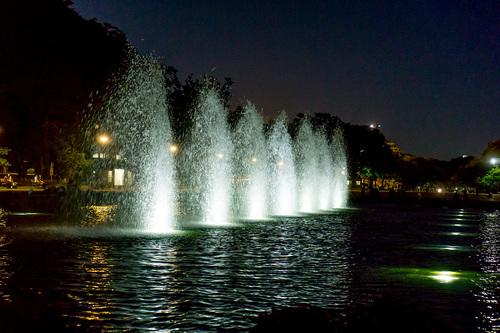 2018年7月1日夜の上野公園6