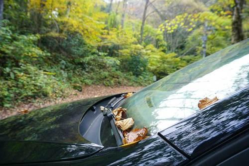 落ち葉が溜まる日影沢の駐車場