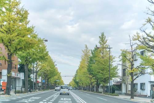 2018年11月3日(土) 帰り道の高尾駅付近