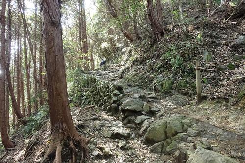 高尾山稲荷山コース-山道の様子