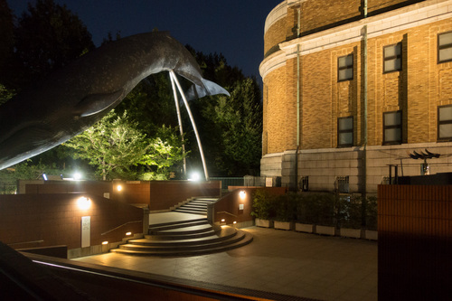 夜の国立科学博物館2