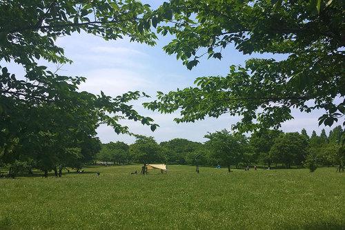 舎人公園の写真6