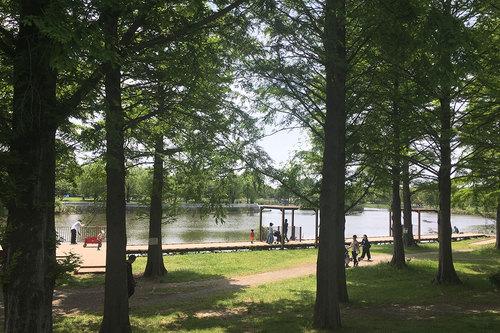 舎人公園の写真7