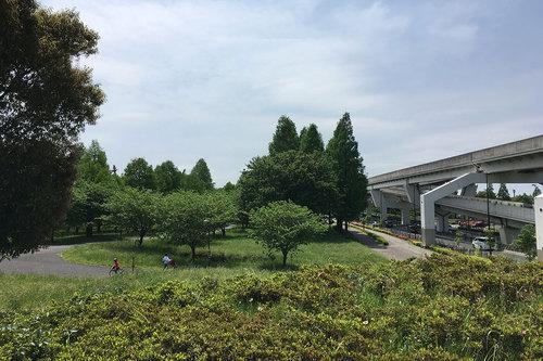 舎人公園の写真13