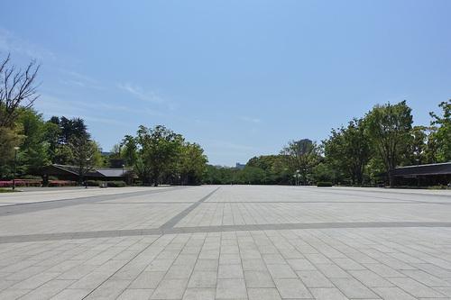 人気のない上野公園