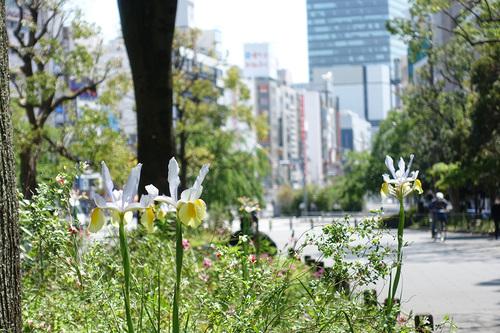 STAY HOME週間 上野公園入口