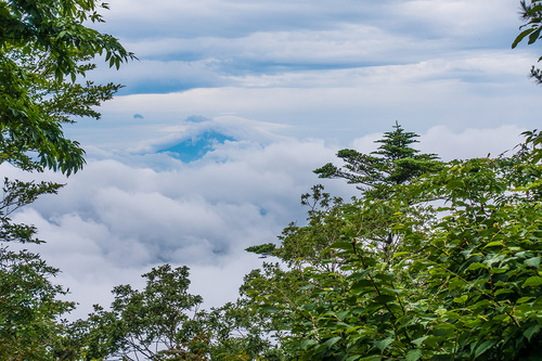 梅雨の三頭山 山頂からの展望