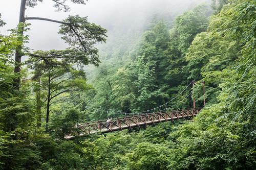 梅雨の三頭大滝 滝見橋