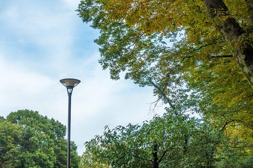 2020年10月の上野公園_3