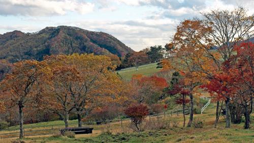 霧降高原 大笹牧場の紅葉