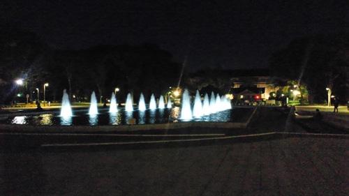 上野公園の夜の大噴水