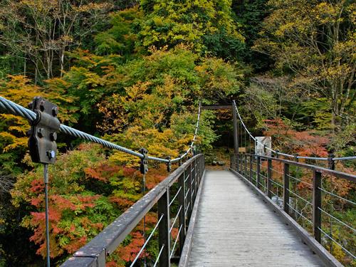 鳩ノ巣小橋(吊り橋)
