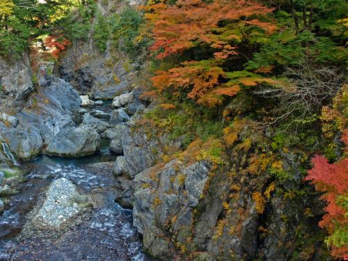 鳩ノ巣渓谷の紅葉風景