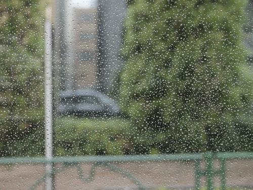 雨の築地周辺
