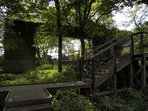 記念の森散策路 デッキ