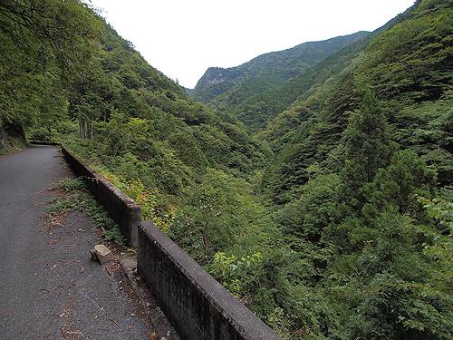 林道脇の崖